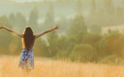 Live Your Dream in Cobblestone Meadows